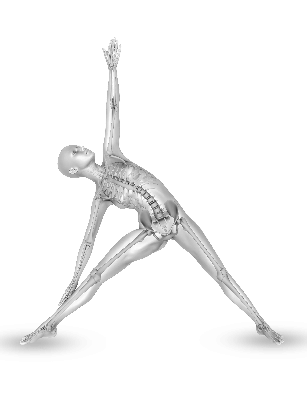 Ostéopathie et posture, la solution aux maux. Le centre du Pays basque vous aide à soigner vos maux à l'aide d'un accompagnement spécialisé